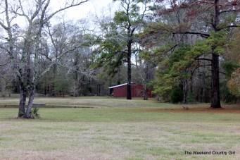 pond and barn
