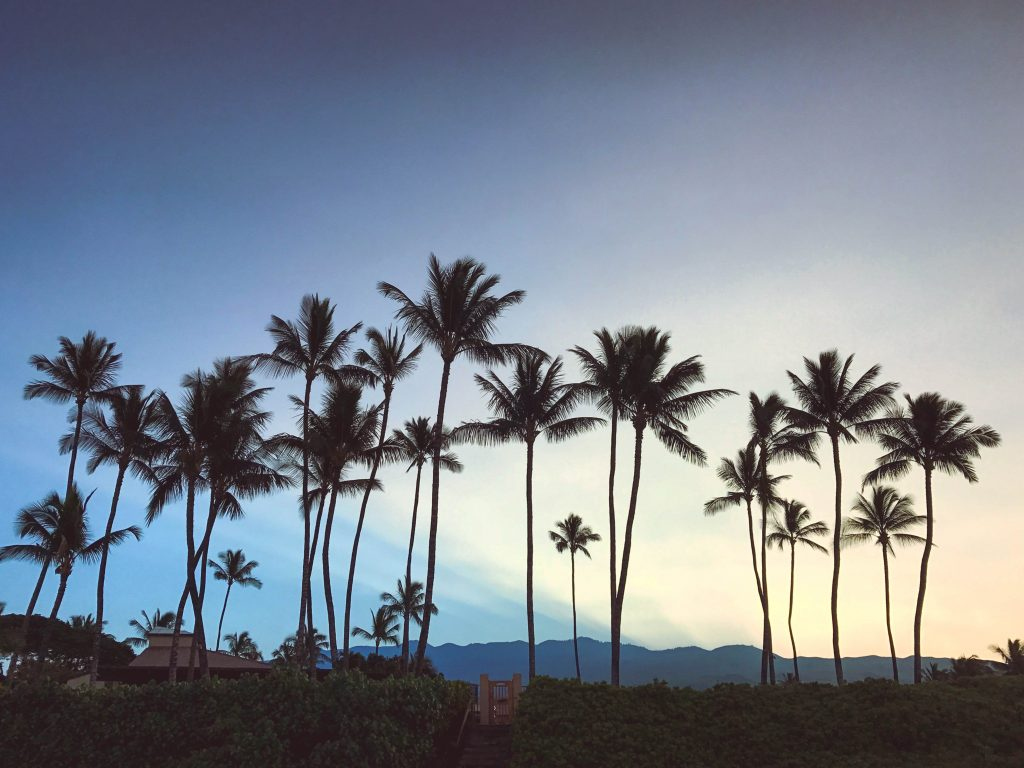 Flytographer, Maui, Hawaii, Honeymoon, Maui Things to Do, Maui Places to Eat, Maui Newlyweds, Maui itinerary #maui #travelblog #traveltips