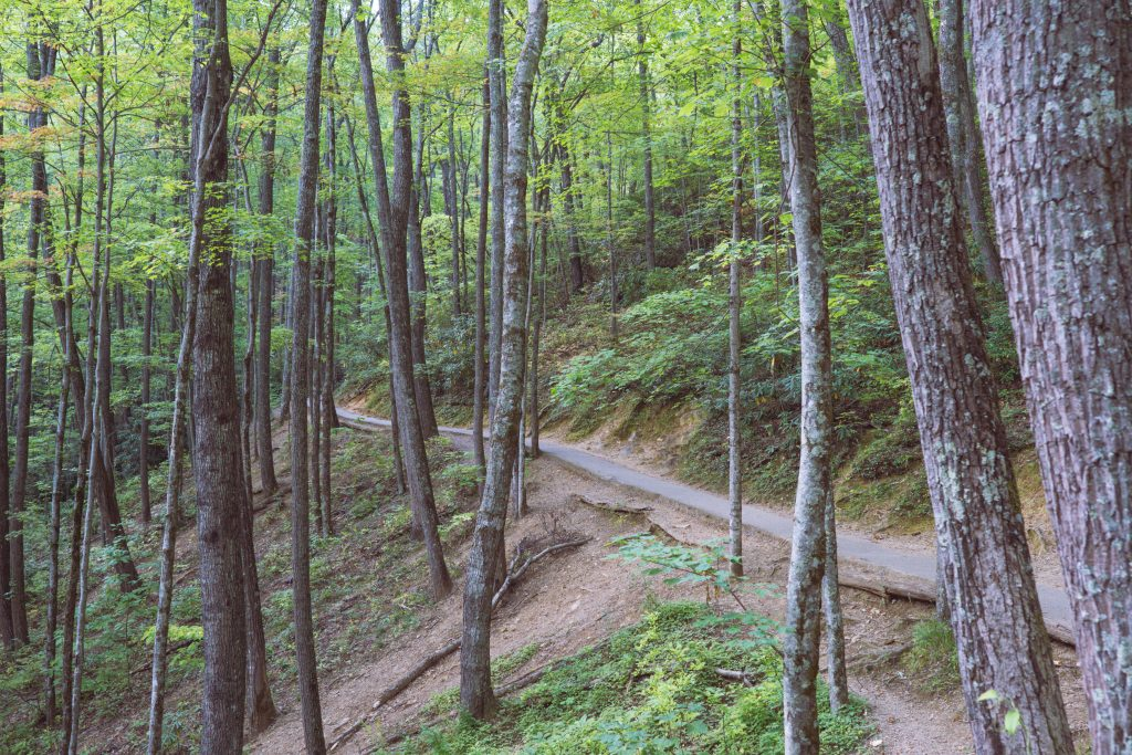 Gatlinburg, Smoky Mountains, Laurel Falls hike