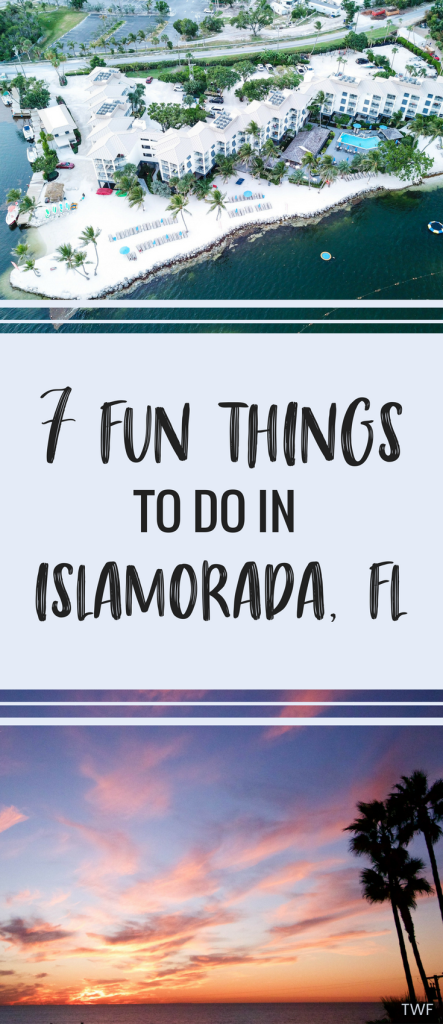 7 Fun Things to do in Islamorada, Florida // things to do in the keys, Islamorada attractions, Islamorada hotels, Theater of the Sea, Florida Keys, Florida travel, #travelblog #floridablogger #floridalifestyle #loveFL