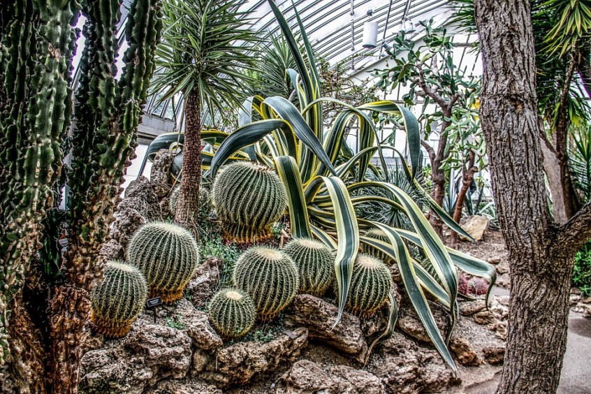 best botanical gardens in europe