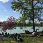 Retiro Park- Awesome Things to do in Madrid