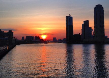 Fun Things To Do in Rotterdam - What To See in Rotterdam