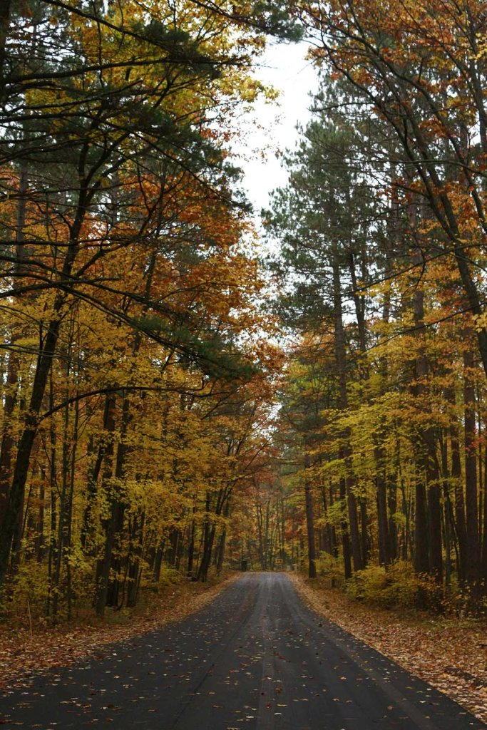 Here are 5 things to love about fall.