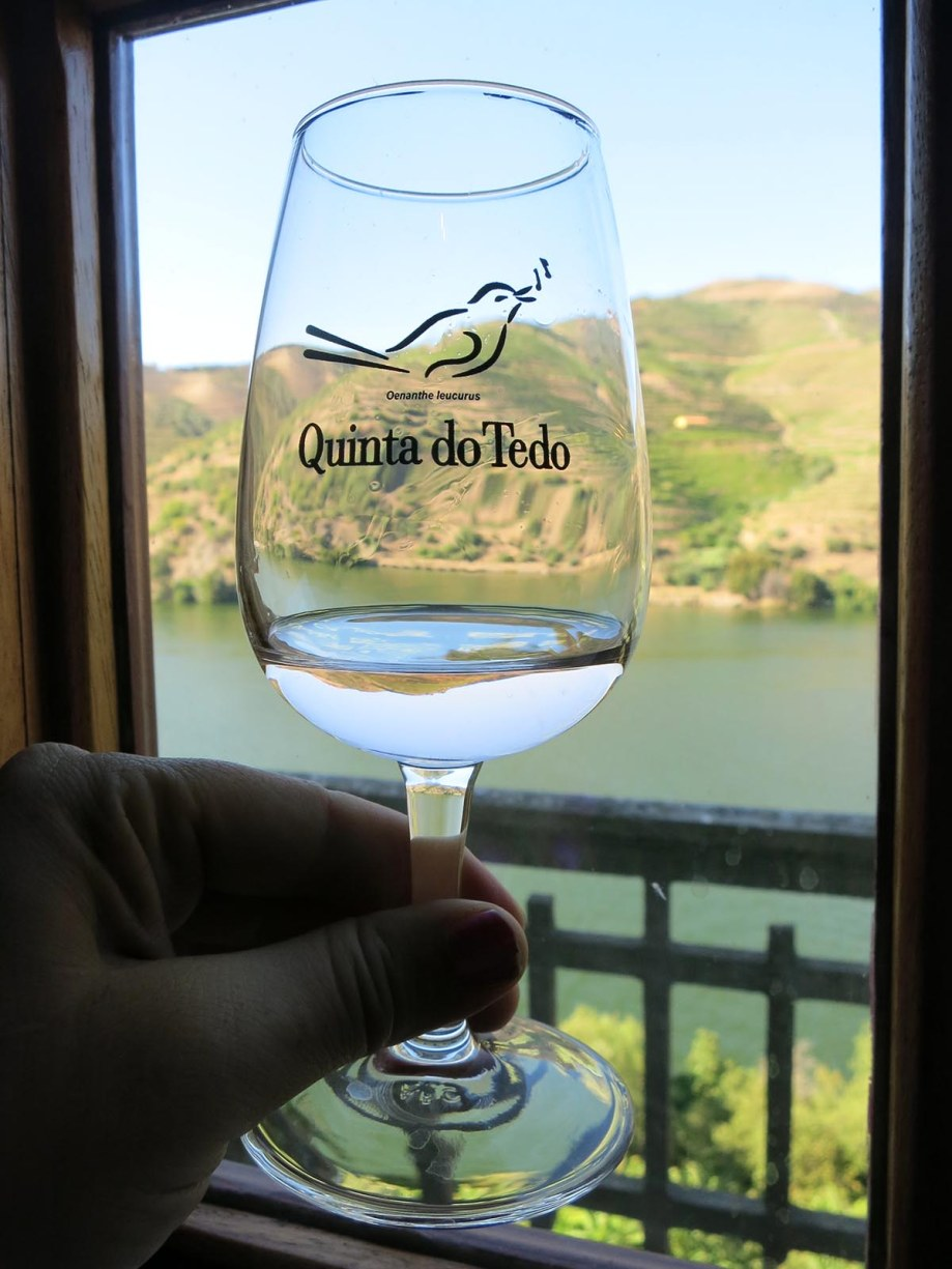 Portugal's Douro Valley is world famous as the place where the grapes for port wine are grown. The Douro valley is most easily accessed with a car. However it is possible to explore some of this stunning region via public transit with a bit of creativity. - Quinta do Tedo