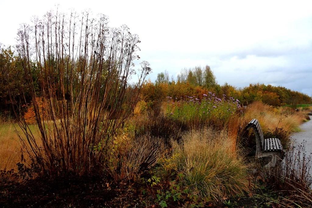 Garden Designer Piet Oudolf