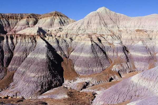 Guide to Petrified Forest National Park