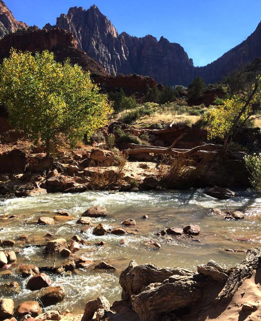 What is Parkitecture? Zion National Park