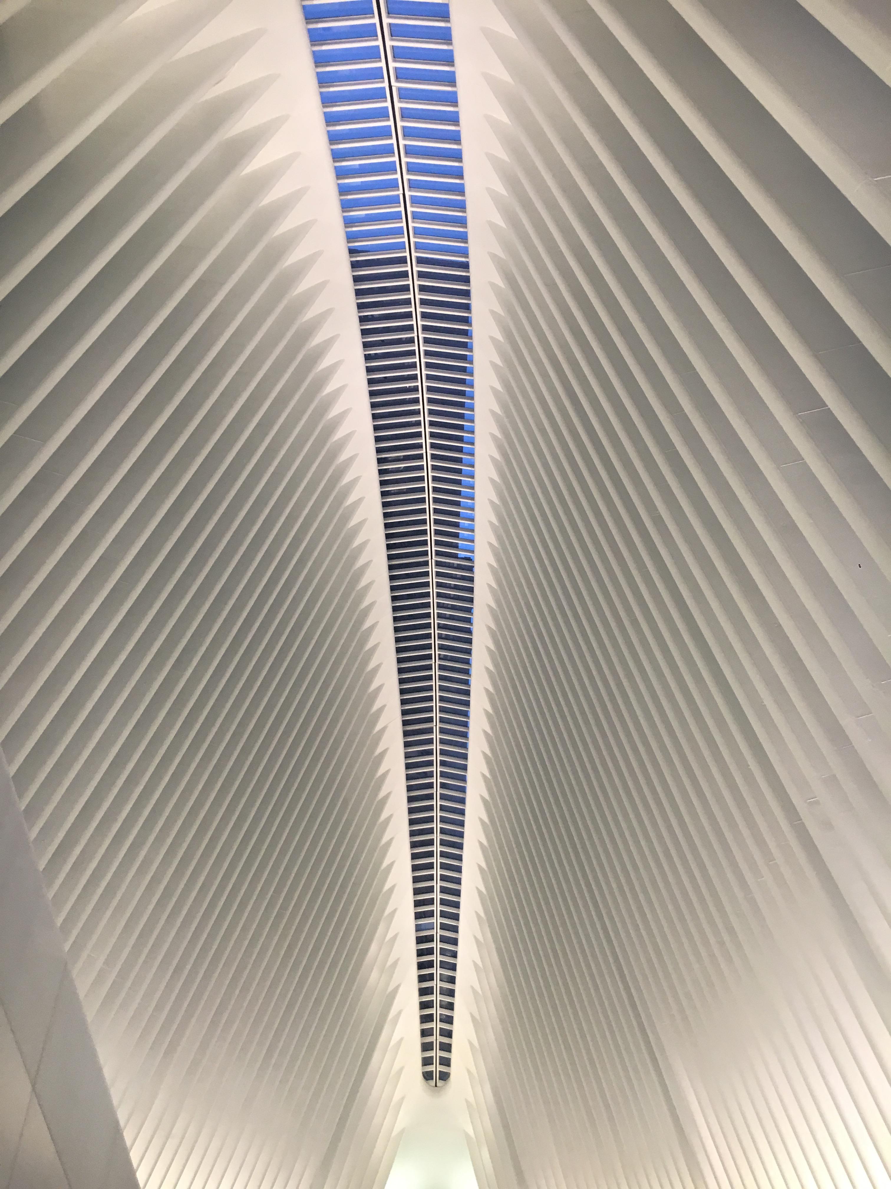 oculus ceiling