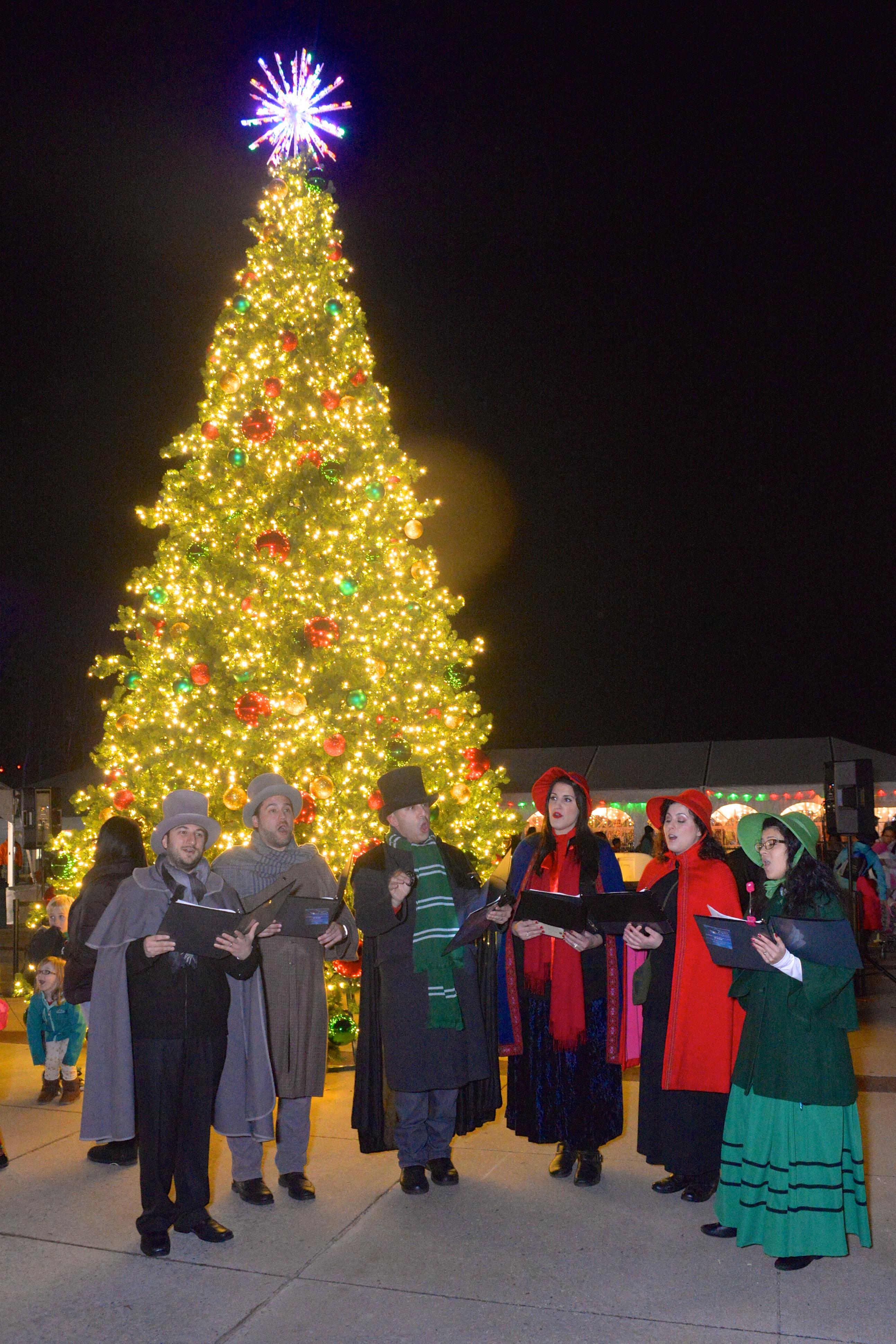 Westchester's Winter Wonderland Christmas trees