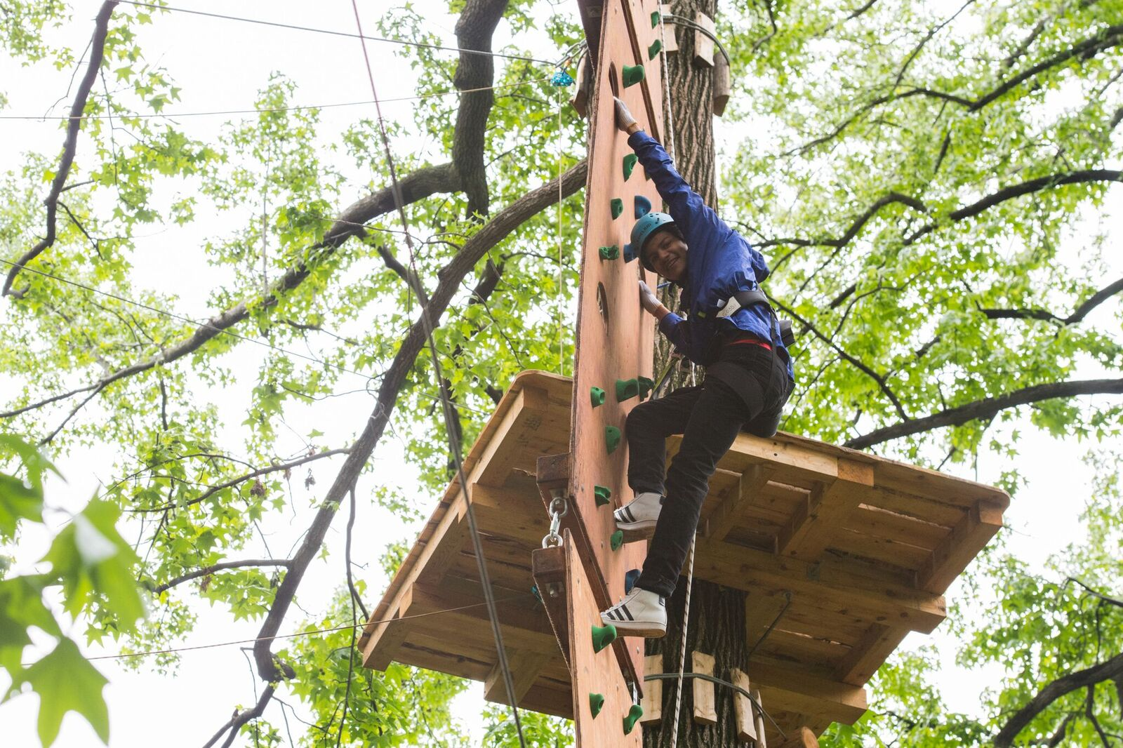 climbing bronx zoo treetop adventures