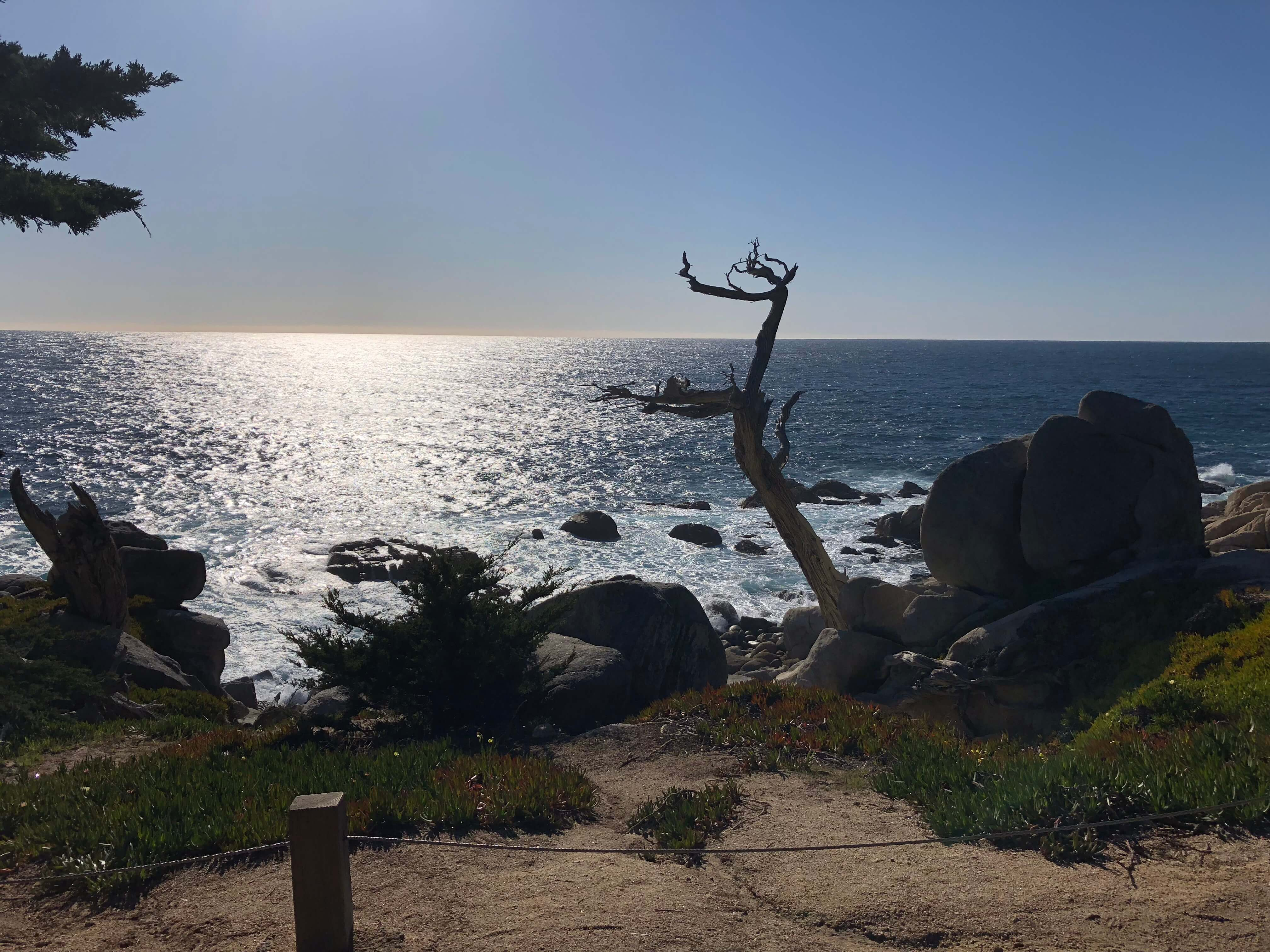 17-Mile Drive carmel-by-the-sea