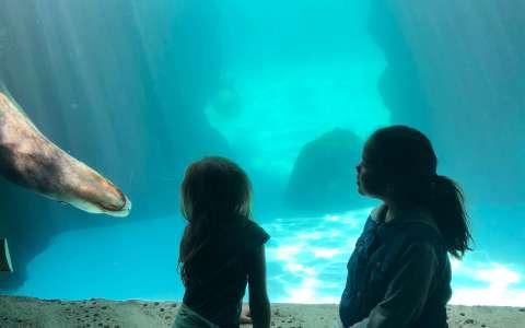 Long Island Aquarium trip to the north fork