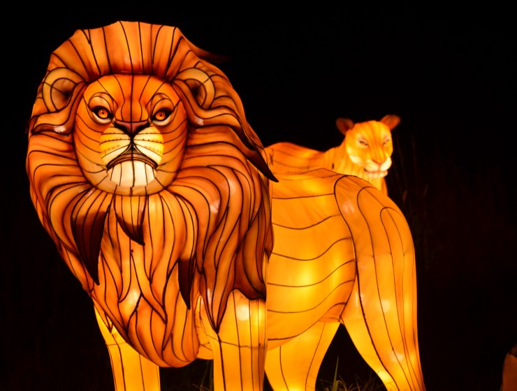 Bronx Zoo Holiday Lights includes: