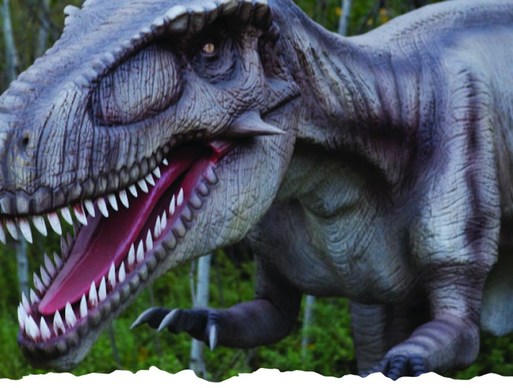 On Mon., June 1st, Field Station: Dinosaurs is celebrating International Dinosaur Day with extensive Facebook Live content including live feeds from its Derby, KS. location with Expedition Commander, Guy Gsell and The Mighty T-Rex, a 15-foot Juvenile T-Rex puppet.