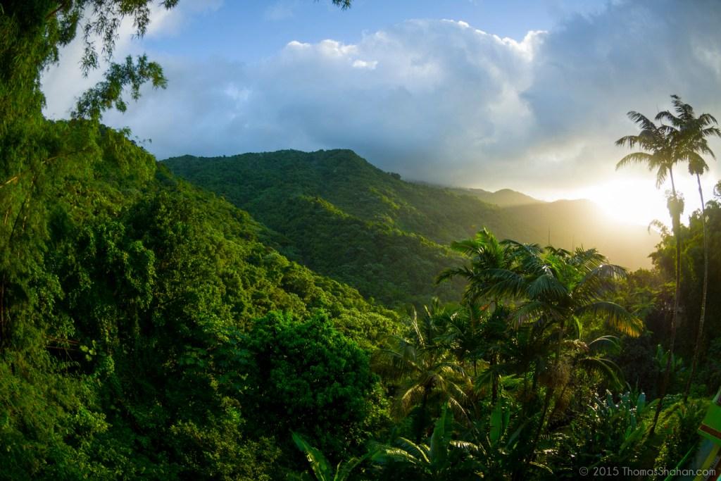 El Yunque, rainforest, Puerto Rico
