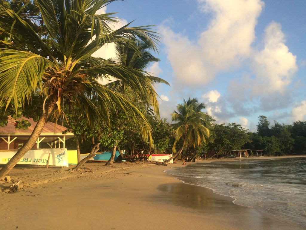Saint-Luce Beach, Martinique
