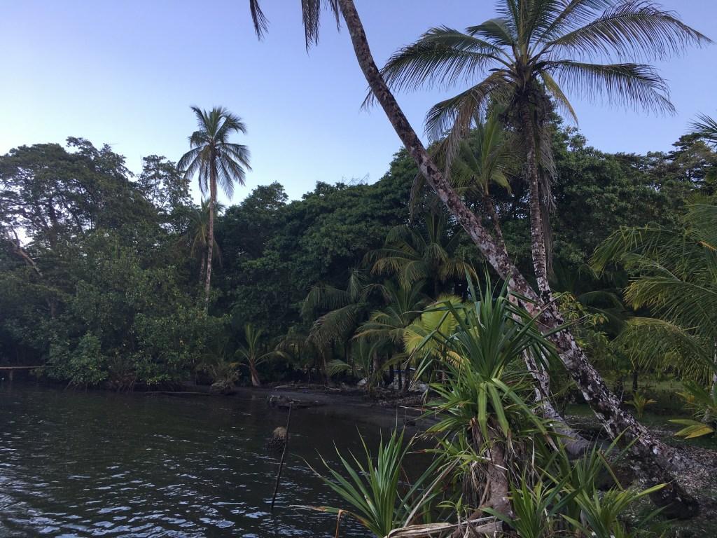 Hiking in Isla Solarte, Bocas del Toro | TheWeekendJetsetter.com