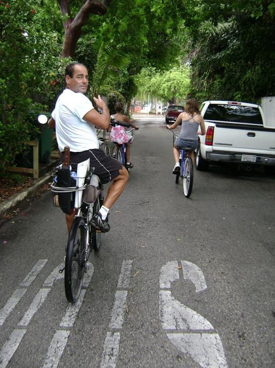 Lloyd's Custom Working Tour Bike <br data-recalc-dims=