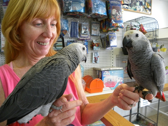 Jeannie Ketcher has worked at Whalton's for more than two decades. She said tourists who often visit their store say handling and interacting with the birds is one of the most memorable experiences of their entire vacation