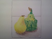 Color Gourd and Pear