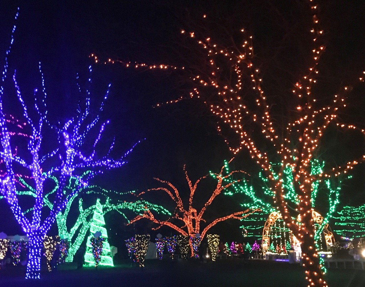 Gluten-Free Food & Fun This Year in the ATX - Austin Trail of Lights 2018