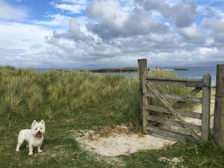 Beach Iona