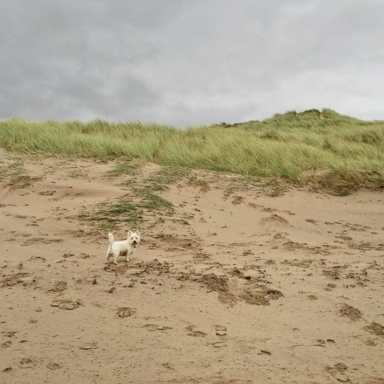 Big Sands, Gairloch