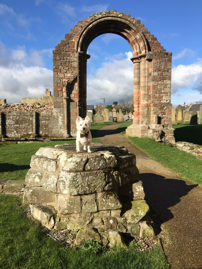 Coldingham Priory, Scottish Borders