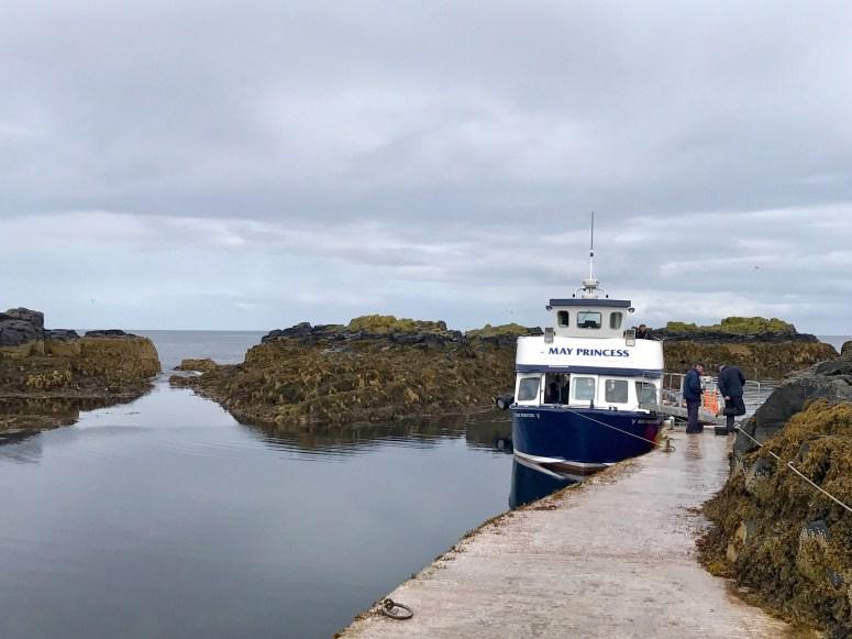 Isle of May boat trip