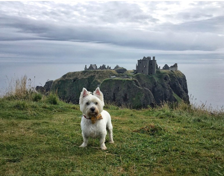 Scottish castles
