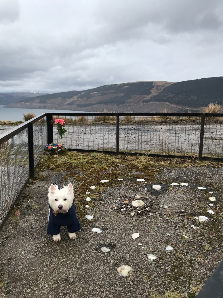 Tinker's Heart, Loch Fyne