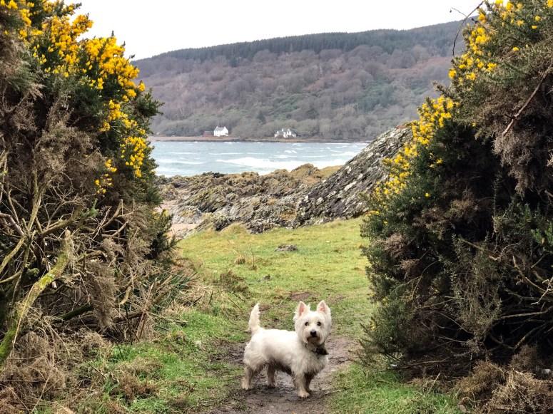 Saddell Bay, Kintyre Peninsula