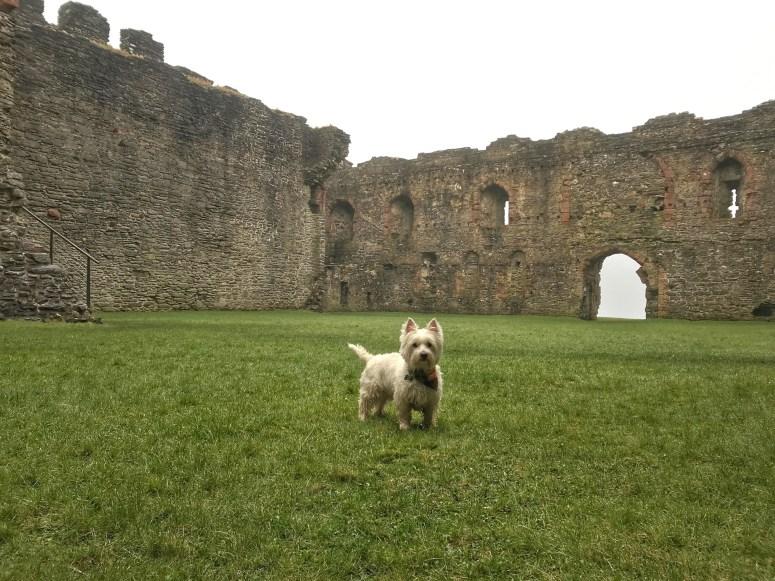 Skipness Castle, Kintyre Peninsula