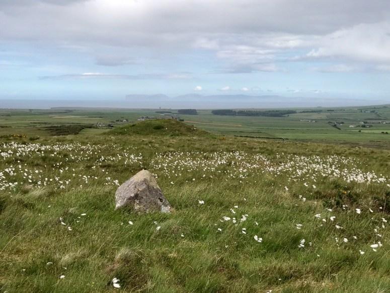 Cnoc Freiceadain Long Cairns, Caithness