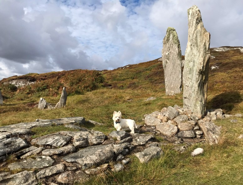 Callanish VIII, Great Bernera