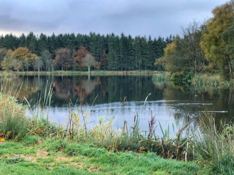 Pitfour Lake, Mintlaw