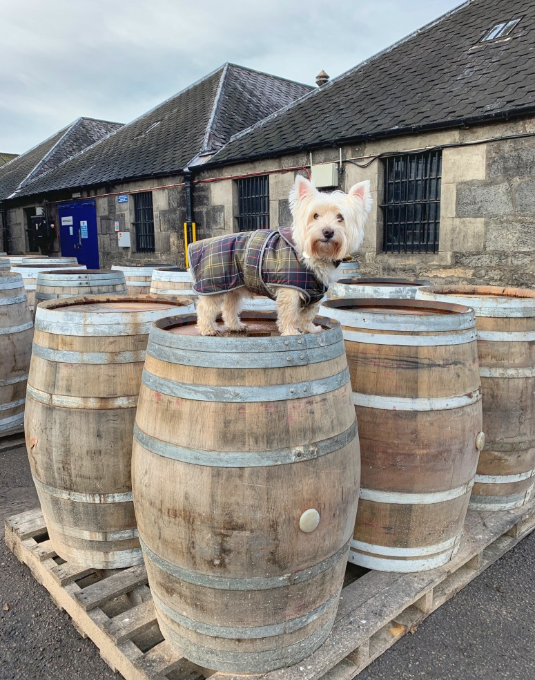A weekend in whisky country