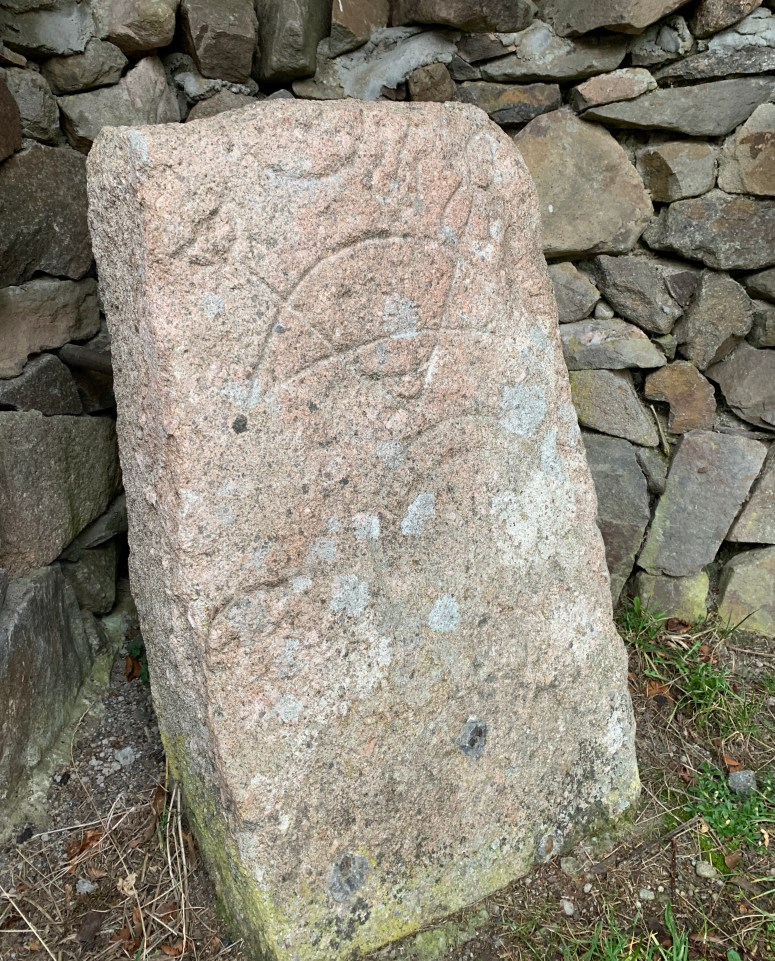 Pictish stone, Rhynie