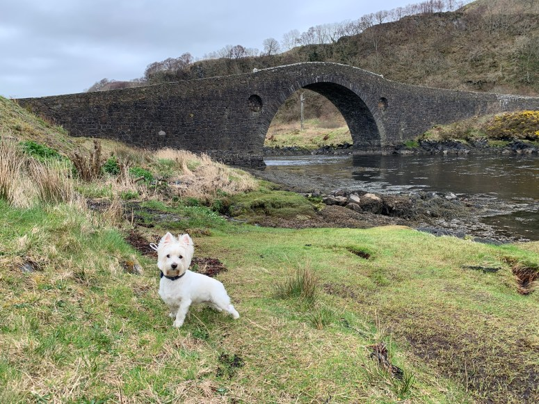 Bridge over the Atlantic, Seil