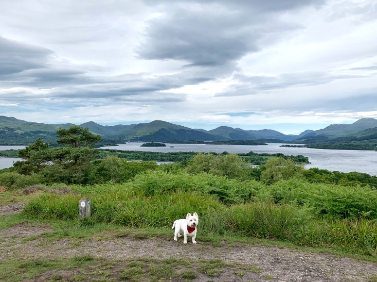 Inchcailloch