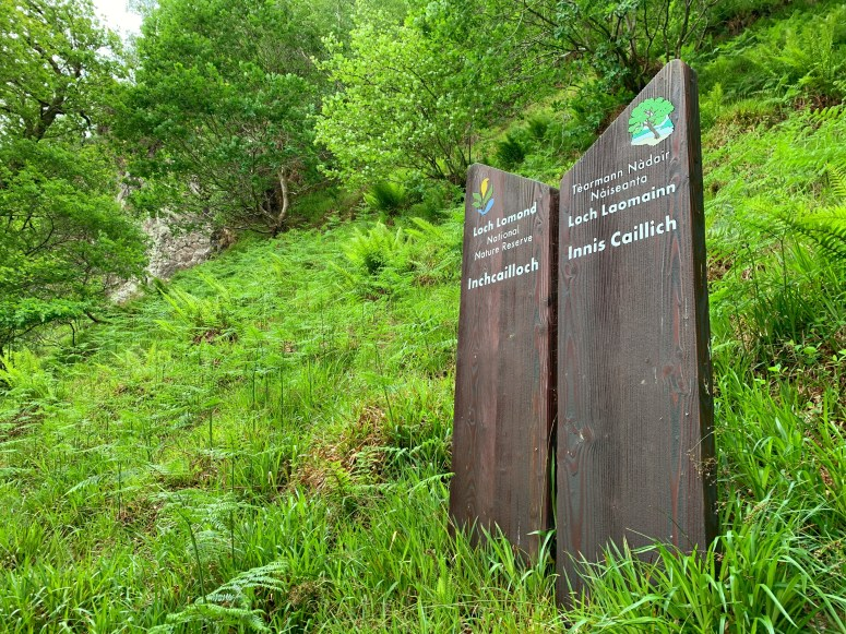 Inchcailloch, Loch Lomond & The Trossachs National Park