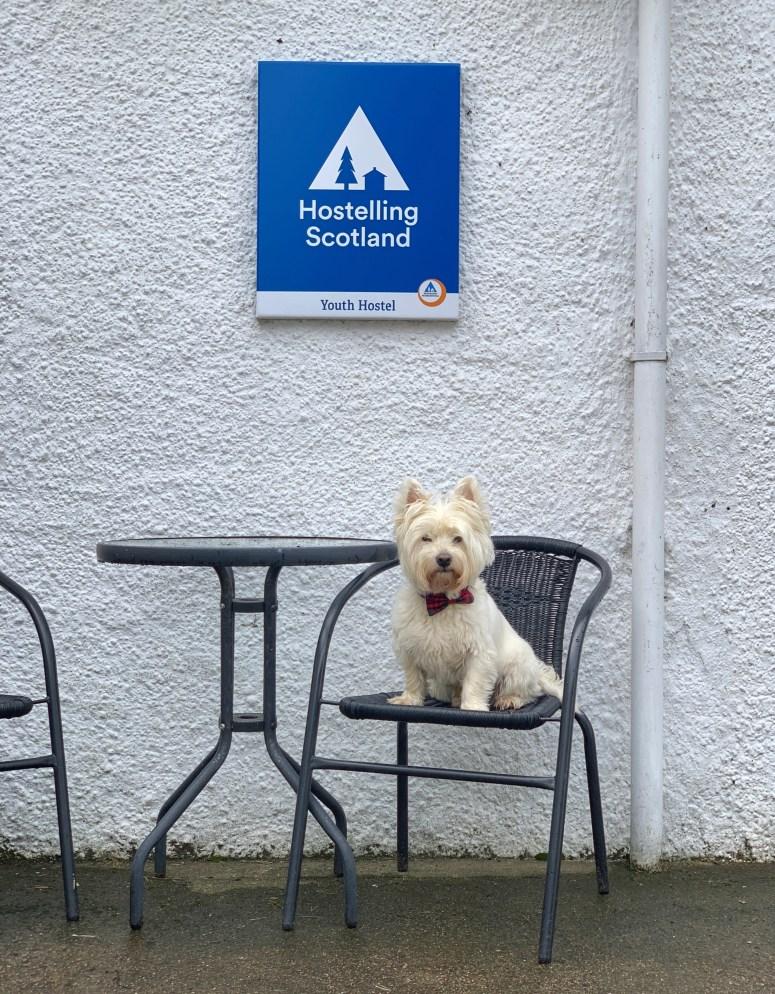 Hostelling Scotland dog friendly