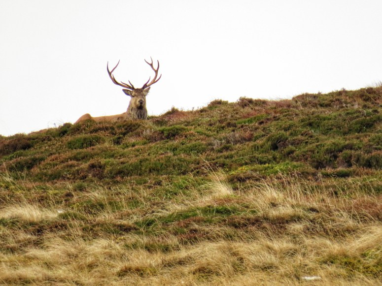 A weekend in Aberdeenshire