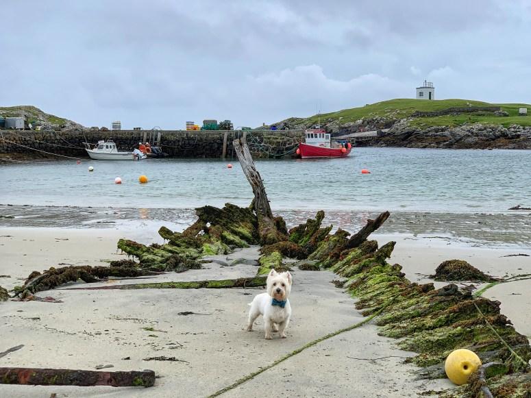 Wreck of Mary Stuart Scaranish