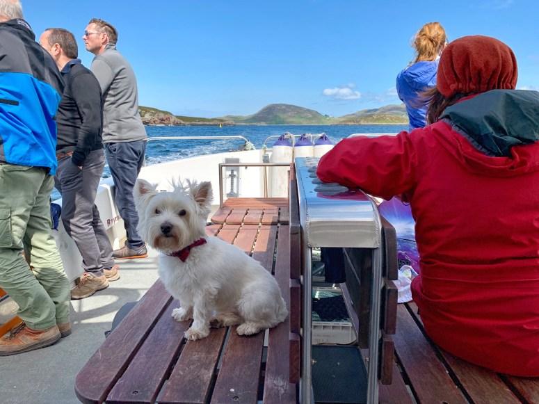 Summer Isles Sea Tours