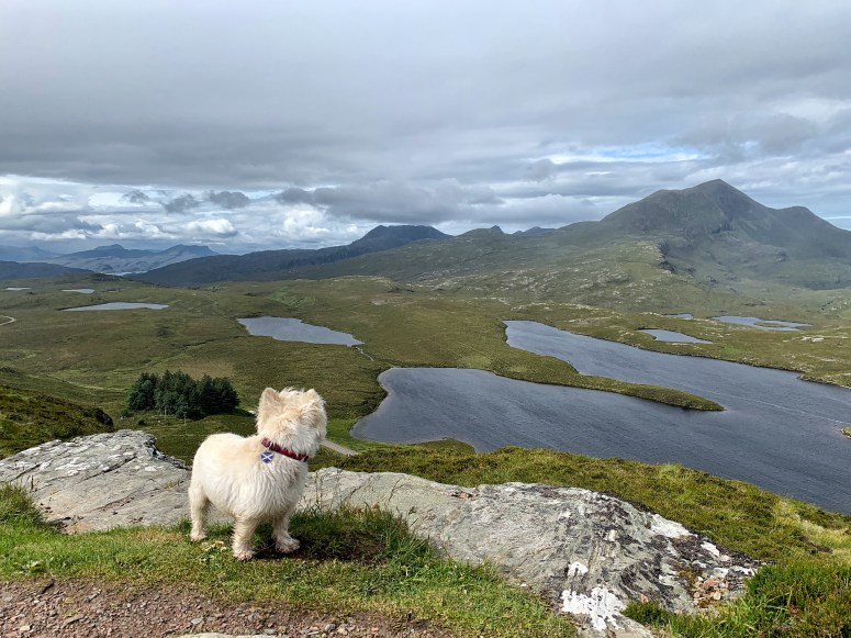 Knockan Crag, things to do in Lochinver