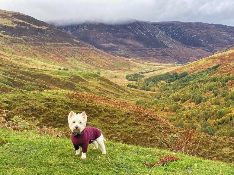 Parallel Roads, Glen Roy, Scottish Highlands