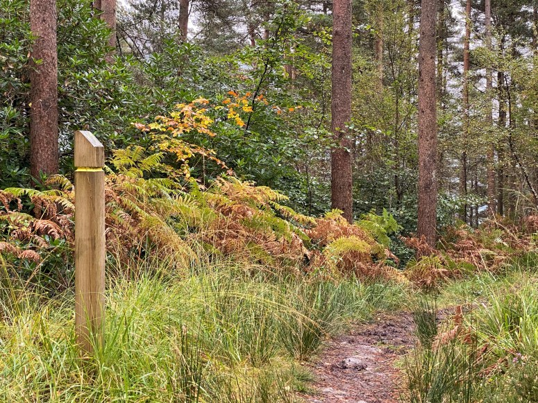 Tarbet Isle trail, things to do in Argyll