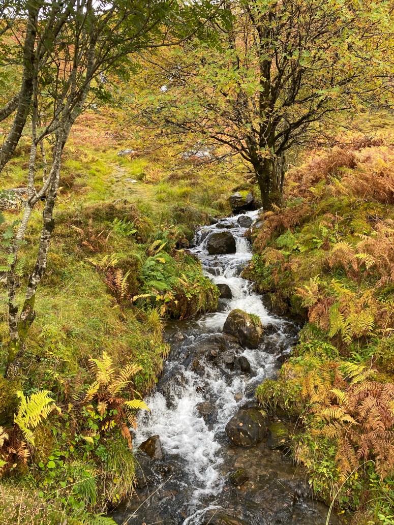 Waterfall, Glen Shiel